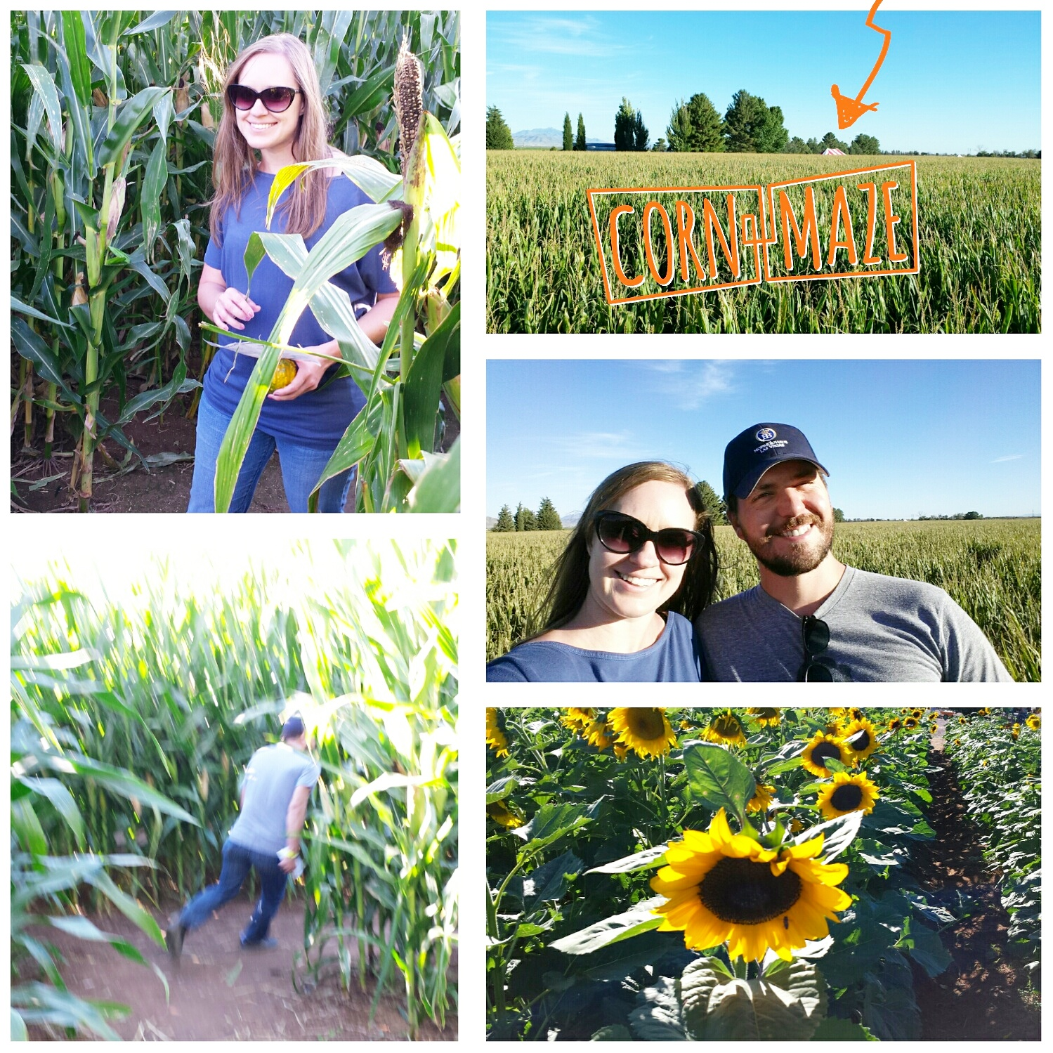 Time to Get Away - Wilcox AZ - Apple Annies Corn Maze
