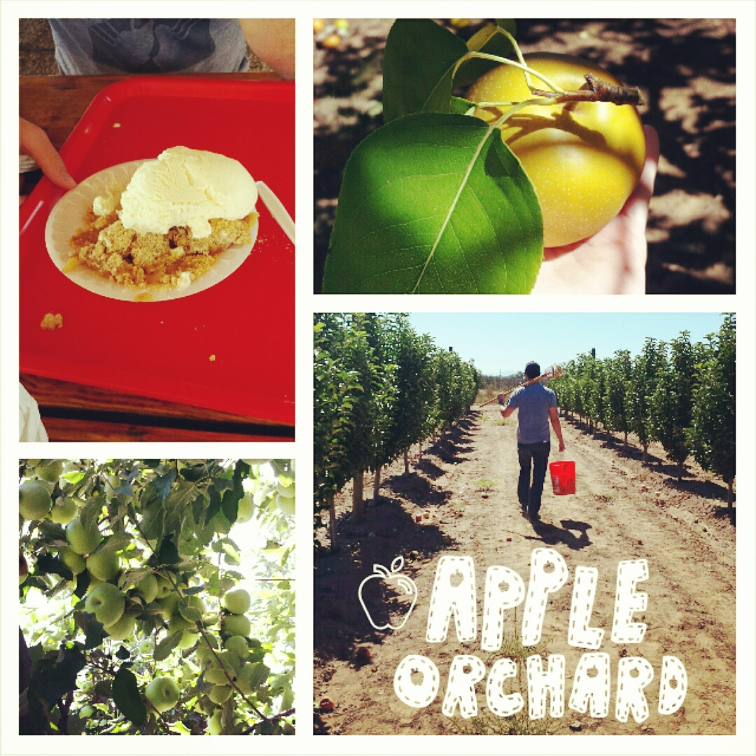 Time to Get Away - Wilcox AZ - Apple Annies Orchard