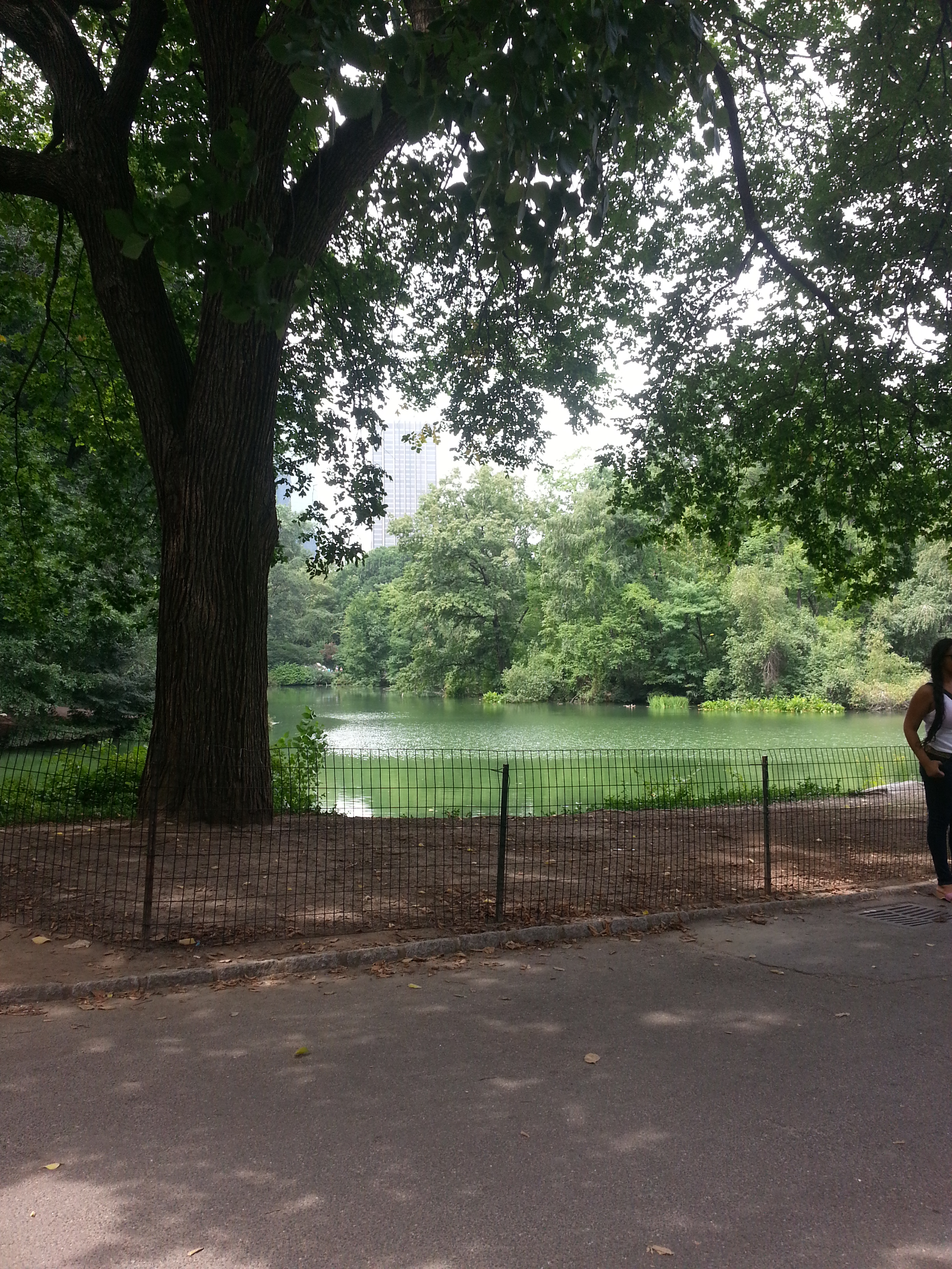 TIme to Get Away - New York City Parks - FINDS Blog